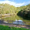 フナの池(和歌山県和歌山)