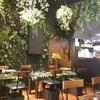 アリスの庭 ナチュラル&オーガニック バル (禁煙/P無し) THE Garden of ALICE Natural & Organic Restaurant Sapporo