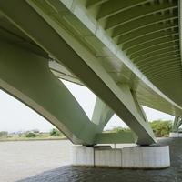 早津江川橋