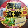 ニュータッチ 満福食堂 とろみ醤油ラーメン(ヤマダイ)