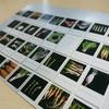 古来種野菜の写真展「Piece Seed Project」に行ってきました!