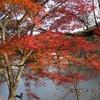 2017.11.26 水沼ダムと花園神社