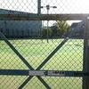 夏の甲子園も中止決定:テニスプレーヤー、心の置きどころ