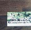 【集合写真の整理】追加できる写真台紙。リングファイルで保管/アルバム/ダイソー/セリア/収納