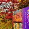 青森県 弘前城址公園【弘前城菊と紅葉まつり】ふらいんぐうぃっち 聖地巡礼(舞台探訪)