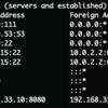 Go の http.Server は各種 Timeout をセットした方が良い