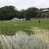 千葉県いすみ市農業体験シリーズ第2回:除草作業