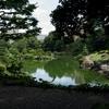 清澄庭園の風景