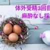 【不妊治療】3回目の体外受精・採卵日当日(恐怖の麻酔なし採卵)