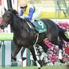 タコイチの【勝負レース回顧】チャレンジC!