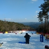 雪遊びに持って来い。親子で気軽に行ける旭高原元気村。