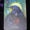今日のカード The Crow