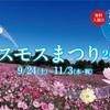 【国営昭和記念公園 コスモスまつり2016】
