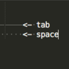 SublimeText3で、spaceとtabを可視化する