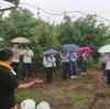 人材育成プログラム研修がUMEMARU FARMに来園されました。