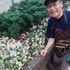 「町田市立町田第四小学校の花壇づくりボランティア」