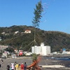 1月13日(月)西風強風