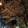 桜を眺めながら徒歩で山手線一周