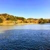 2019.3.13亀山湖