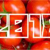 【2018年】「トマト収穫量」ランキング
