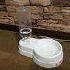 セリアのペット(犬、猫)用給水器がコスパ最高で超おすすめな件!