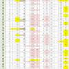 新型コロナウイルス、都道府県別、週間対比・感染被害一覧表 (6月11日現在)