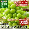 2018年09月1日楽天市場「フルーツ・果物」ランキング -【日本ランキング】