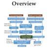 インタラクティブなRNA seq解析webアプリケーション iDEP
