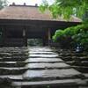 阿弥陀寺の紫陽花  (σ・∀・)σ