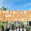 福岡エフェクト(西区西の丘)のカフェが癒しの空間!九州最大級の園芸店へGO