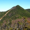 【甲武信ヶ岳】長野から山梨へのテント泊縦走、雲海の果てに浮かぶ富士山と艶やかなシャクナゲを楽しむ1泊2日の山旅