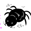 ハエトリグモはカワイイし役に立つ
