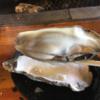 北海道の道の駅満足度No.1の厚岸グルメパークの炙屋では、牡蠣をあぶり倒して食べまくれる