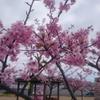 岡山市南区の観光地について