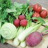 新鮮野菜の社内おすそわけ会やりました!