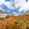 涸沢・奥穂高岳に行くことにしました。【 1 思い立ったが吉日 】