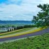 北海道富良野に広がるラベンダー畑「ファーム富田」、また行きたい。