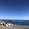 2018/11/24 春野漁港脇のサーフ 13:00-17:00 ショアジギング フラットフィッシュ