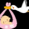 妊娠6ヶ月目で第三子が念願の女の子と判明!その時の周りの反応は?