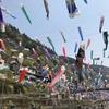 福岡市から日帰りドライブデート 杖立温泉で鯉のぼり祭り