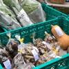 今日の野菜販売