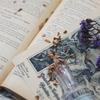 【50%ポイント還元】幻冬舎のKindle本3,400点以上が実質半額に 「幻冬舎キャンペーン」開催中