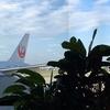 JAL106:ITM-HND ファースト