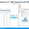 Salesforce データを JupyterLab 上でpandas.DataFrame として利用