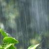 ゲリラ豪雨の運転は怖い