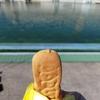 栃木市総合運動公園フィッシングフィールド【子どもと一緒にプールフィッシング。最終章】