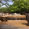 東京都北区でおすすめ!無料の水遊びスポット・公園