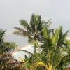 古代ハワイアンの記憶から潜在意識へ (3)