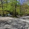 4月の道志の森キャンプ場を散策