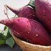 ビタミンCの効果・食材・レシピ|肩こり解消ために積極的にとりたい栄養素④